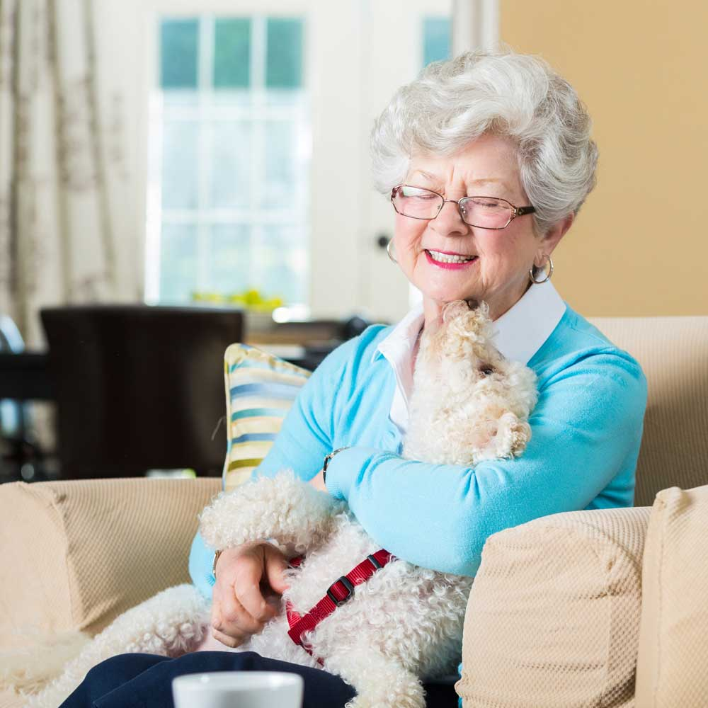 Pet Therapy Memory Care Resident at a table